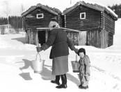 Bilde av Vassbæring-på-Amperhaugen Foto Kari Moen Øvergaard 1957