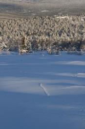 Bilde av nordavinden som  tok mesteparten av sporet, Foto Sverre Hovind