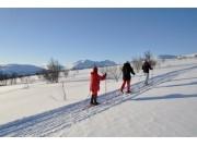 Ros for skiløypene
