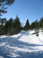 Bilde av Rondeslottet fra Gammelvegen. Foto Hans Sollid