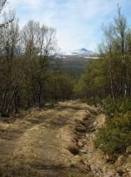 Bilde av Høgronden fra Nygardssetra. Foto hans Sollid