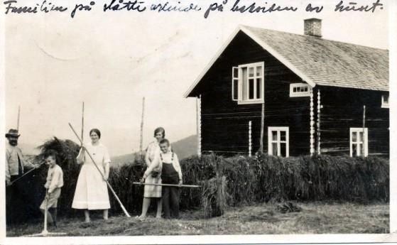 Bilde av vinne på Haudland