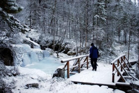 Bilde av vinter ved Hørsa foto Marianne Støvneng Olsen