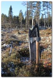 Bilde av Jaktøks og sag