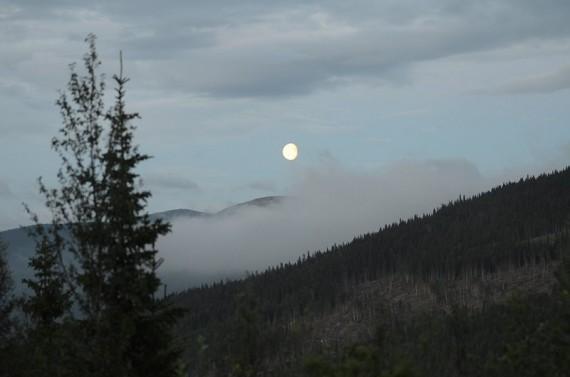 Bilde a,måneskinn i sommerkvelden foto Reond Løvmo