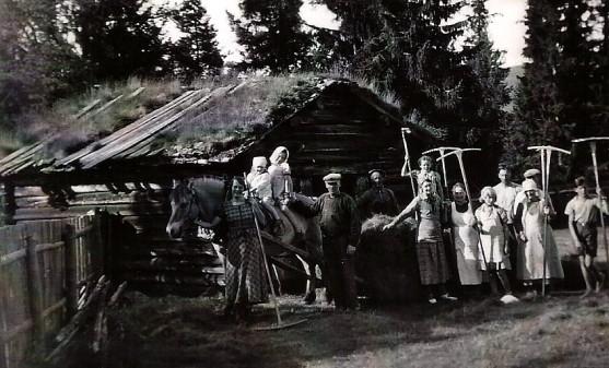Bilde fra slåtten i Søre Finstad. Foto utlånt av Anne Sofie Troye Nielsen