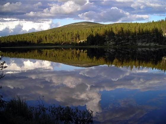 Bilde av  Hamntjønnet foto Kjell Olav Knudsen