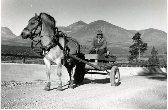 Bilde av Ragnhild og Oline Moen 1957