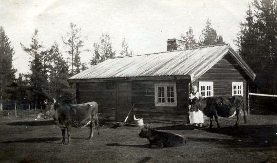 Bilde av Mostua med gamle Olea Mostuen1837 - 1918. Foto utlånt av Ulf Helgesen