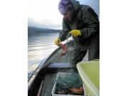 Fiskerettsaken i mål