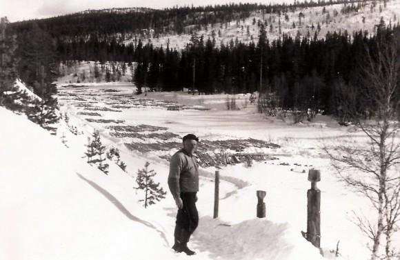 Einar Bjørnersen inspiserer tømmeret på Sæterslona. Ca. 1955. Foto Ambros Sollid