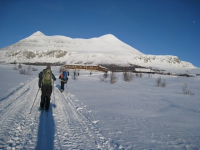 Vinterbilde Foto Håkon Magne Skjøren