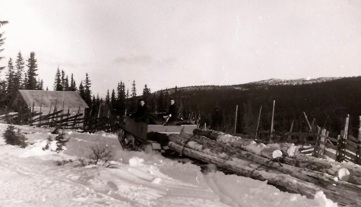 Bilde av tømmerkjøring  på Mokjølen. Foto Ambros Sollid