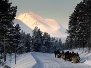 Vinterkjøring i ferdesveien
