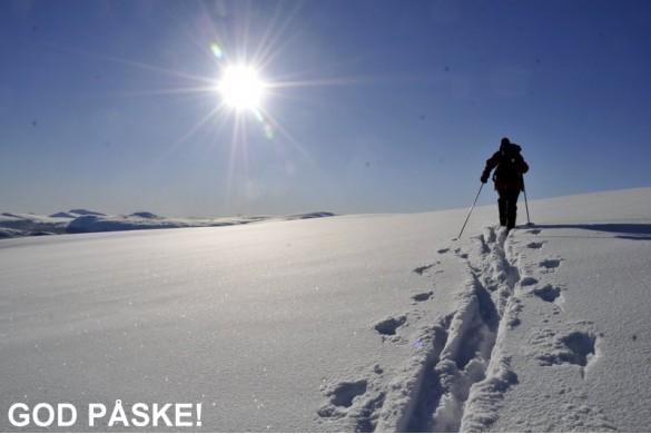 Mot drømmepåske i Sollia og Rondane