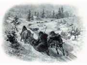 Utisetra - vinterkjøringen