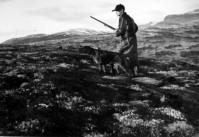 Per S Moen på rypejakt 1939. Foto Rolf Øvergaard