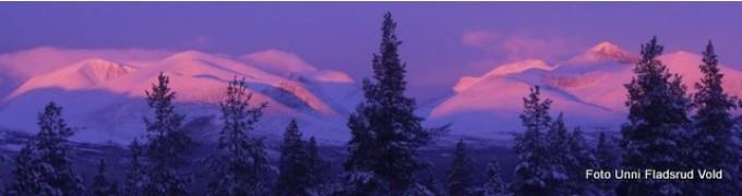 Morgensol over Rondane. Foto Unni Fladsrud Vold