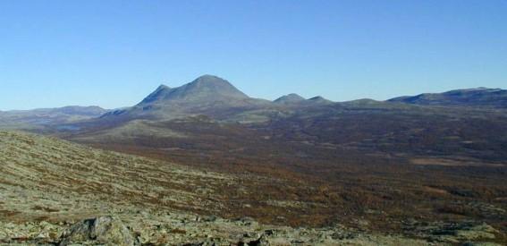 Bilde avSølnkletten fra Grytdalsvola. Foto Hans Sollid