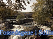 Programmet for Fossedagene
