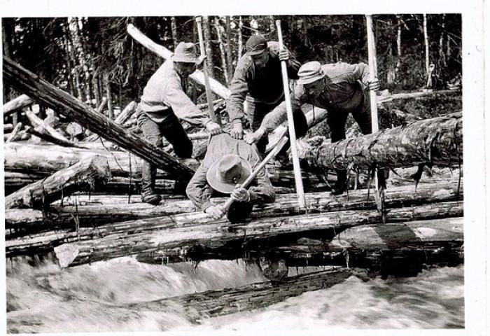 1-Lunnekarer i arbeid -bandstokken skal hogges ove