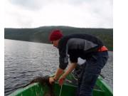Dykkere rydder gode fiskeplasser