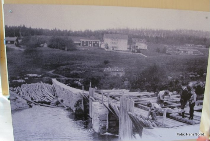 Den første dammen