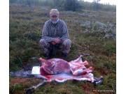 Simla falt i Finnsjøfjellet