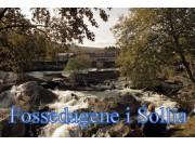 Årsmøte i Foreningen Fossedagene i Sollia - sakliste