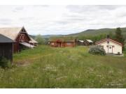 Foran Fossedagene: Program for fredagens vandring på Mogrenda