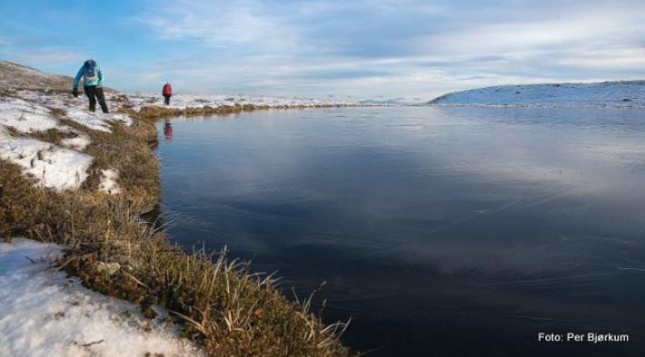 Den første isen på Neskamptjønnet