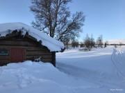 En hyldes til Åsbua