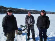 Veteraner på isen