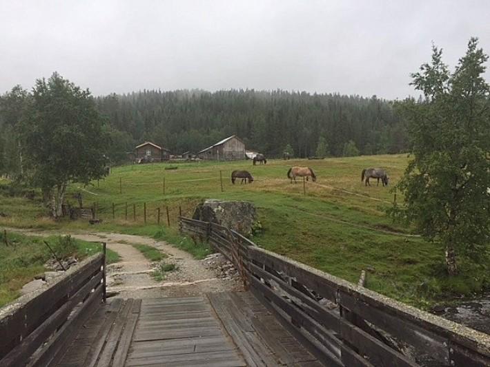 1-18 0814 åpning utstilling Drømmedalen 4