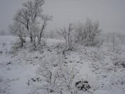 Vinterkjøring i førjulstida - del 2