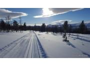 Venter på snø og kuldegrader