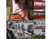 Sesongavslutning på jaktfelttreninga