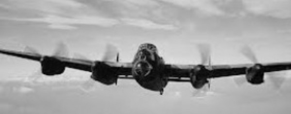 IMG_1865.jpg fly