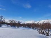 Bli med Dag på tur inn til Vuludalen