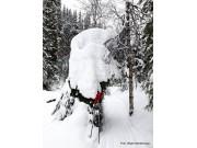 Godt med snø