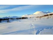 Rapport fra vinterfjellet