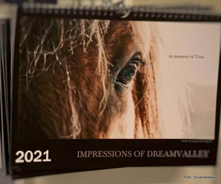 21 0108 kalender 1