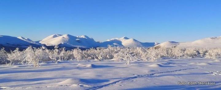 21 0103 Rondane-001