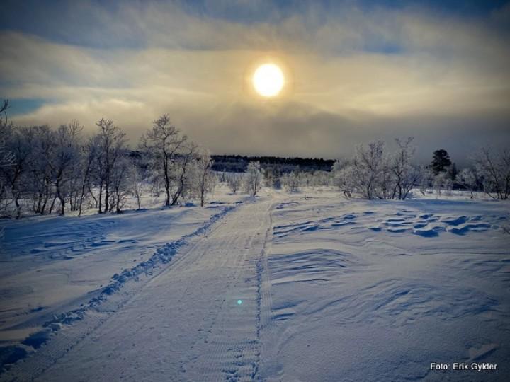 21 0117 Vinter 3