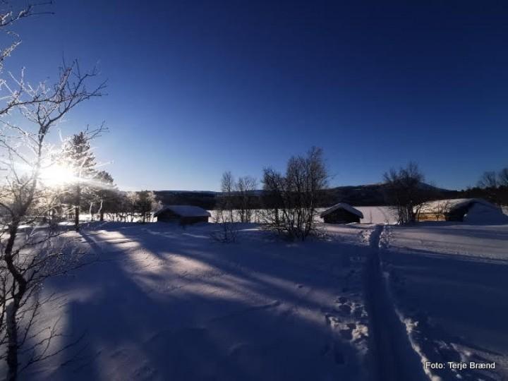 21 0124 Finnsjøen
