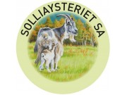 Solliaysteriet holder åpent