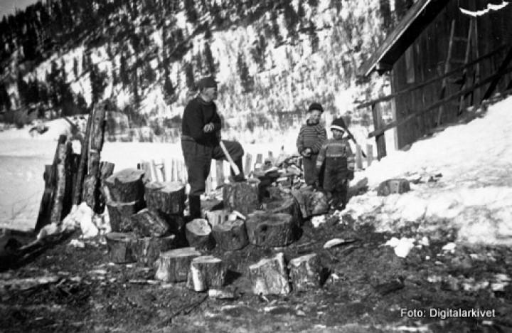 Vedkløving Ludvik Tangenmfl HB