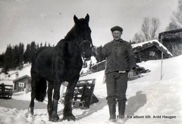 Trygve Haugen med hesten Vårleik i Kirkestuapå slu