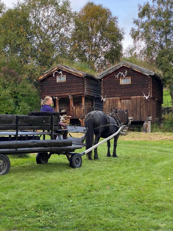 Tine og hest_4746